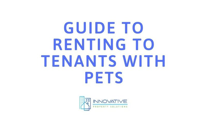 guide to renting to tenants with pets