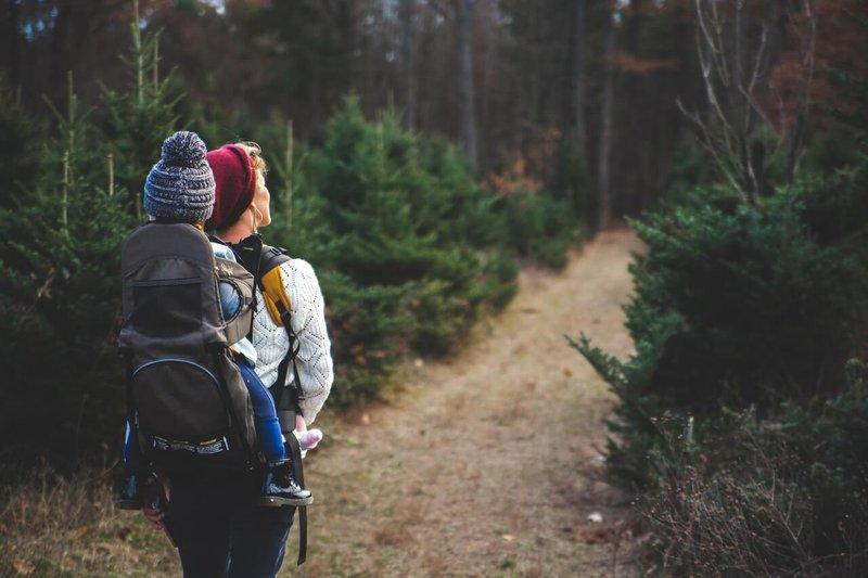 hiking-trails.jpg