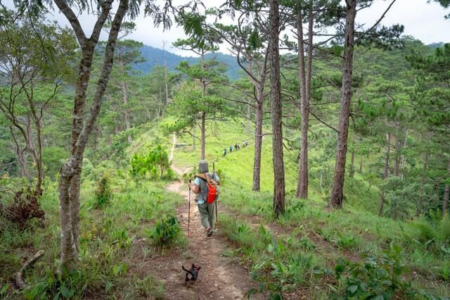 pet-hiking-trail.jpg